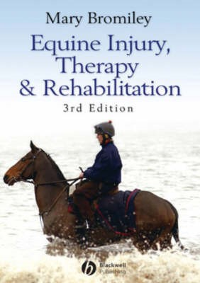 Equine Injury, Therapy and Rehabilitation - pr_104812
