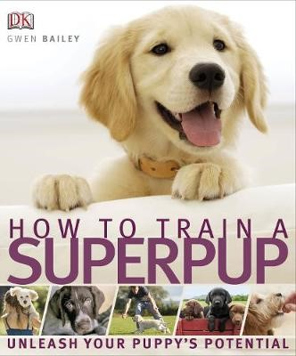 How to Train a Superpup - pr_221146