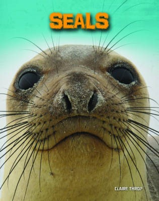 Seals - pr_20389