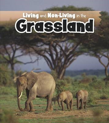 Living and Non-living in the Grasslands - pr_236263