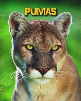 Pumas - pr_208787