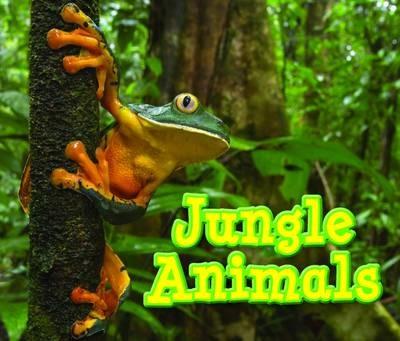 Jungle Animals - pr_237987