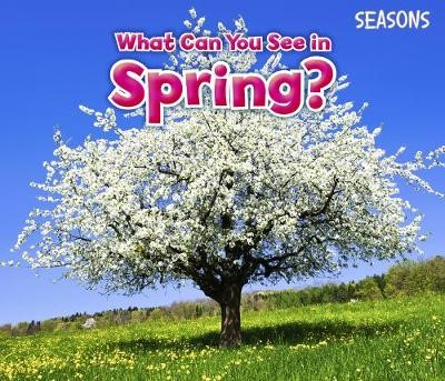What Can You See In Spring? -