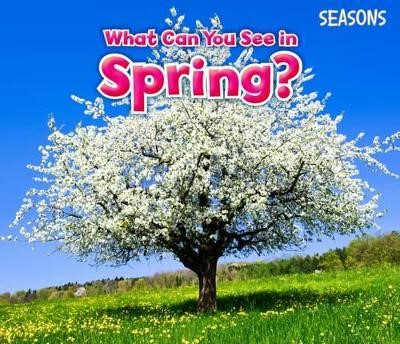 What Can You See In Spring? - pr_19503