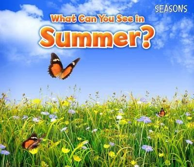 What Can You See In Summer? - pr_19692