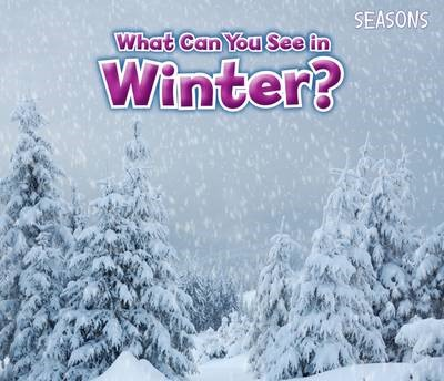 What Can You See In Winter? - pr_19531