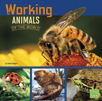 Working Animals of the World - pr_31862