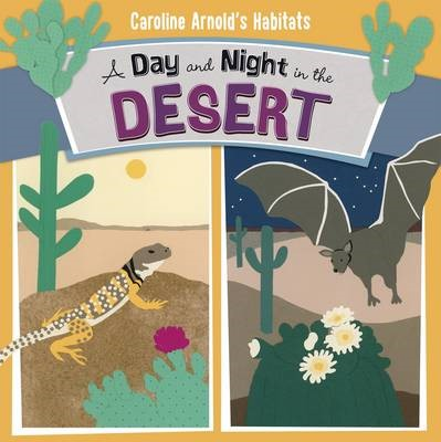 A Day and Night in the Sonoran Desert - pr_209493