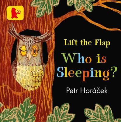 Who Is Sleeping? - pr_319380