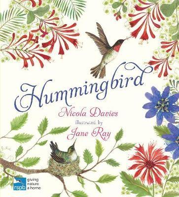 Hummingbird - pr_2153