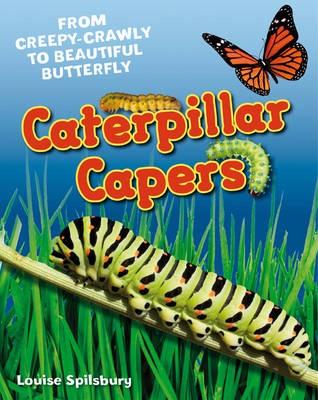 Caterpillar Capers - pr_26770