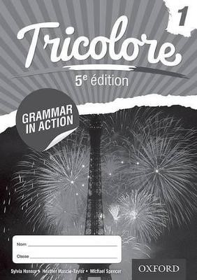 Tricolore 11-14 French Grammar in Action 1 (8 pack) -