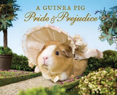 A Guinea Pig Pride & Prejudice -