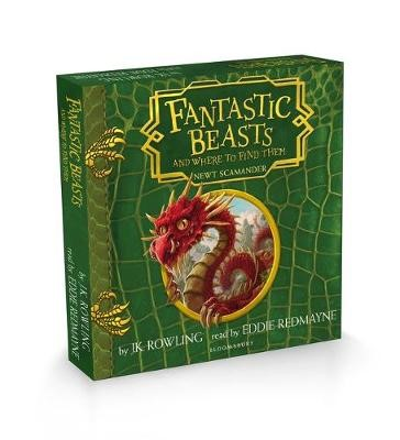 Fantastic Beasts and Where to Find Them - pr_119725