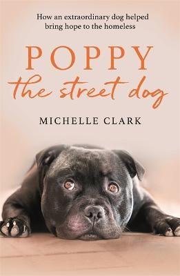 Poppy The Street Dog -