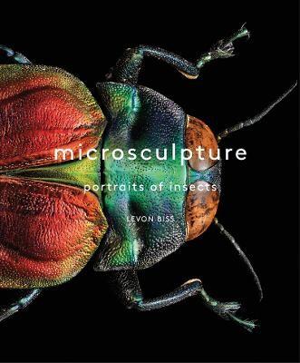 Microsculpture -