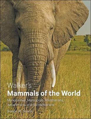 Walker's Mammals of the World - pr_337301