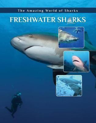 Freshwater Sharks - pr_231786