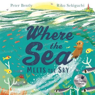 Where the Sea Meets the Sky -