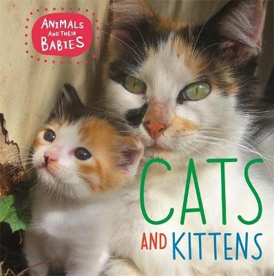 Animals and their Babies: Cats & kittens - pr_333617