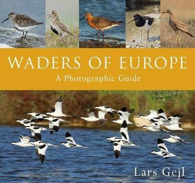 Waders of Europe -