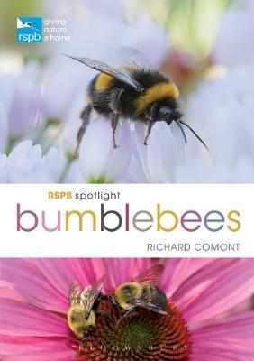 RSPB Spotlight Bumblebees - pr_32988