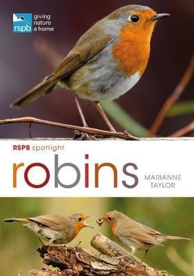 RSPB Spotlight: Robins - pr_31256