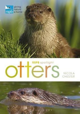 RSPB Spotlight: Otters - pr_240238