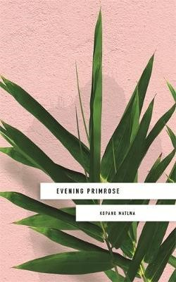 Evening Primrose: a heart-wrenching novel for our times -