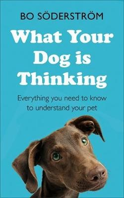 What Your Dog Is Thinking - pr_339006
