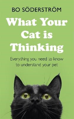 What Your Cat Is Thinking -