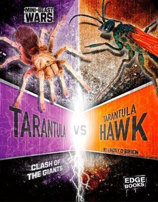 Tarantula vs Tarantula Hawk - pr_208638
