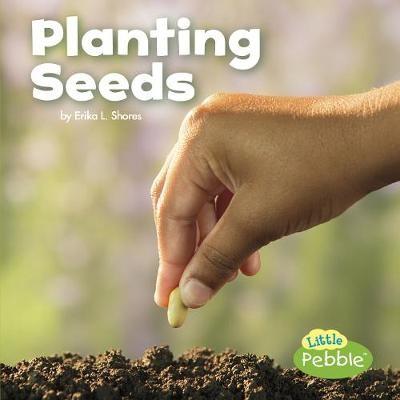 Planting Seeds - pr_19650
