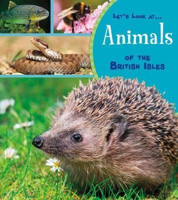 Animals of the British Isles -