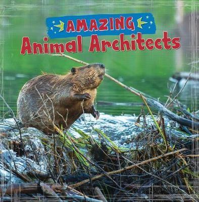 Amazing Animal Architects - pr_407243