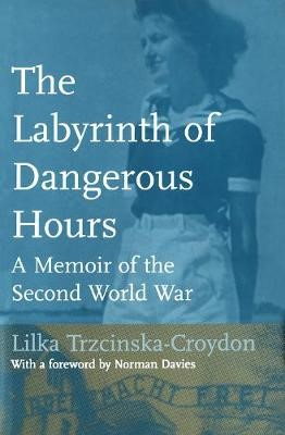 The Labyrinth of Dangerous Hours - pr_31791