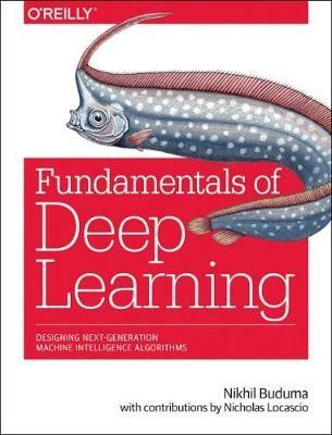 Fundamentals of Deep Learning - pr_187552