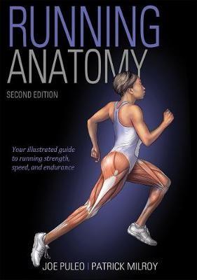 Running Anatomy - pr_284711