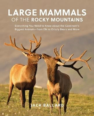 Large Mammals of the Rocky Mountains - pr_84577
