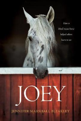 Joey - pr_132849