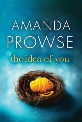 The Idea of You -