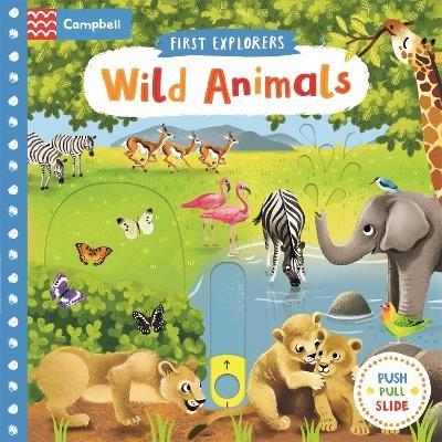 Wild Animals - pr_119135