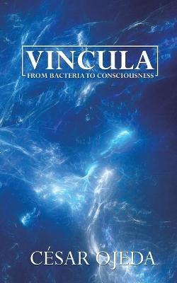 Vincula - pr_36126