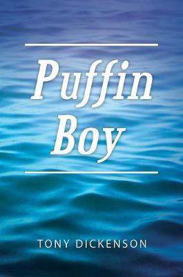 Puffin Boy - pr_31380