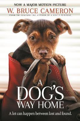 A Dog's Way Home -