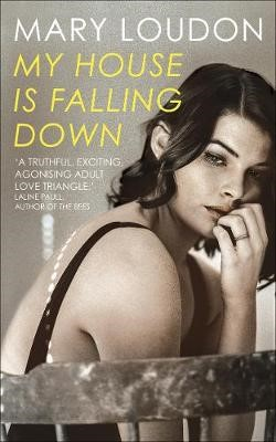 My House Is Falling Down - pr_643