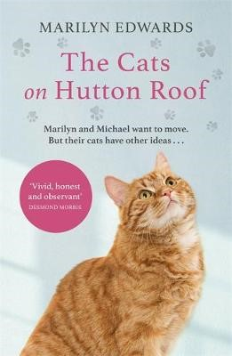 The Cats on Hutton Roof - pr_1748639