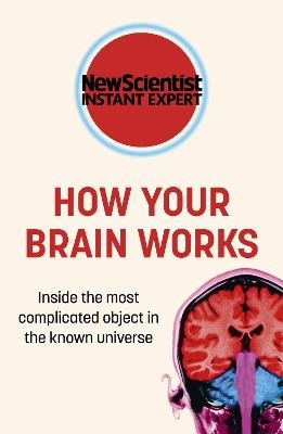How Your Brain Works -