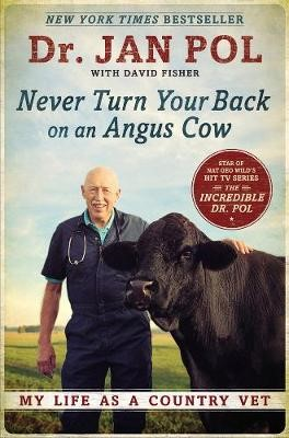 Never Turn Your Back On An Angus Cow -