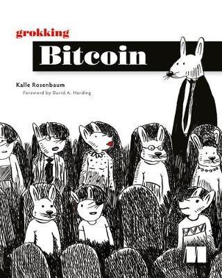 Grokking Bitcoin -